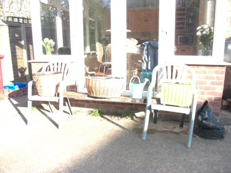 Relaxing in the sunshine on their recycled chairs and supports.