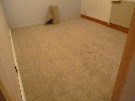 The new third bedroom - all the furniture and furnishings will be put in tomorrow. We got a bargain at the factory shop when I bought a memory foam mattress for £111.00 (a saving of £28.00) - a pre buy on Black Friday!!