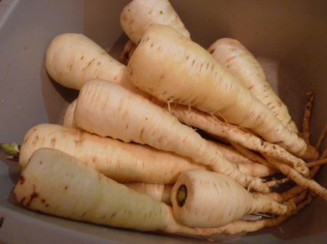 Last of the parsnips from the allotment - all scrubbed and ready for Christmas!