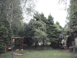 p1170933